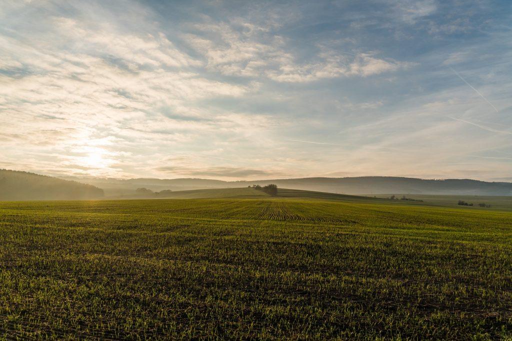 piękne pole lub działka i zachmurzone niebo
